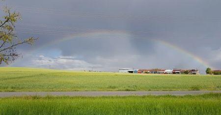 Yağmurun ardından çıkan gökkuşağı büyüledi