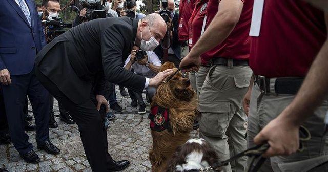 Bakan Soylu: Yakalamaların yüzde 46'sı narkotik köpekleri marifetiyle gerçekleştirilmiştir