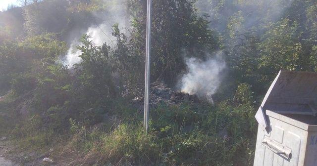 Elektrik direğinden düşen kıvılcım yangına yol açtı