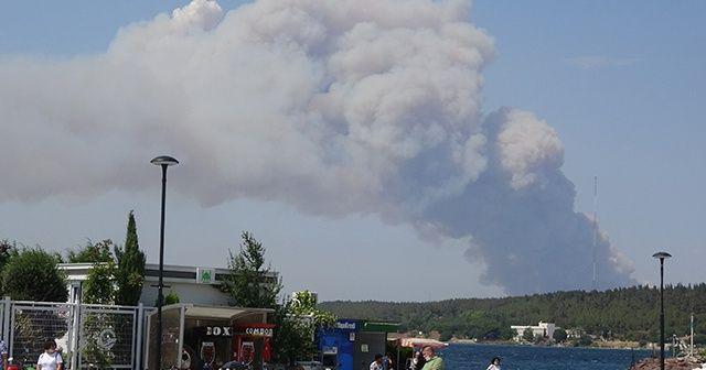 Gelibolu Yarımadası'nda orman yangını çıktı