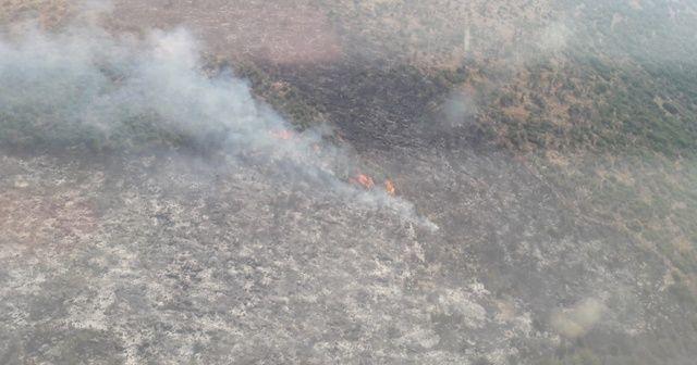 İzmir'de makilik alanda çıkan yangın kontrol altında