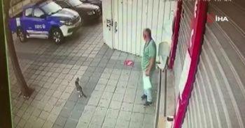 Hırsızlığın bu kadarı da pes dedirtti