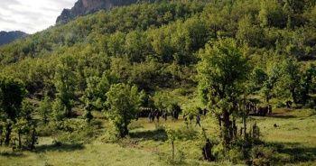 IKBY: PKK mensupları hayati tehlikeye rağmen kaçmaya hazır