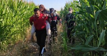 Kayıp yaşlı kadını mısır tarlasında 'Kahve' buldu