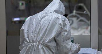 Sivrisineklerin insanlara koronavirüsü bulaştırmadığı kanıtlandı