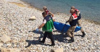 Van Gölü'nden çıkarılan ceset sayısı 59'a yükseldi