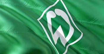 Werder Bremen Bundesliga'da kaldı