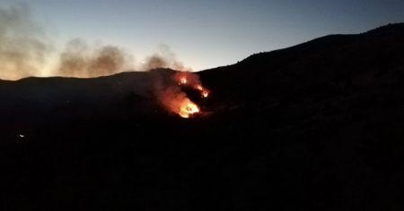 Adıyaman'da ikinci orman yangını