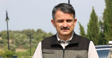 Bakan Pakdemirli: Heybeliada'daki yangınla alakalı 3 gözaltı var