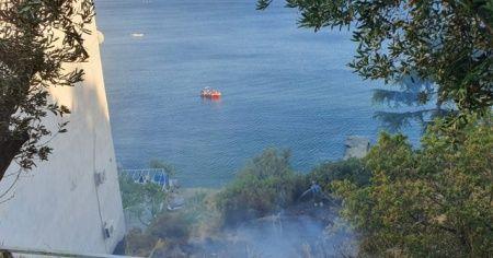Bursa'da yangın...Çamlar yanmadan söndürüldü