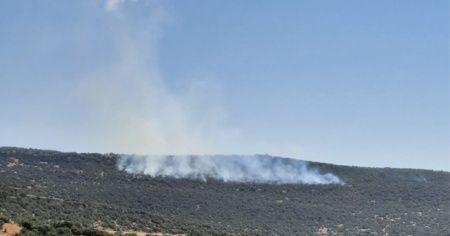 Kilis'te orman yangını