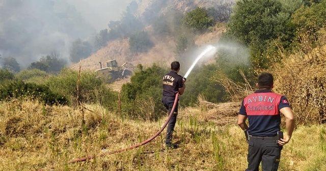 Aydın'daki yangın kontrol altında