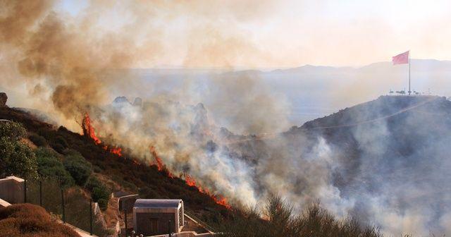 Bodrum'daki yangın 4 saatte kontrol altına alındı, 50 hektarlık alan kül oldu