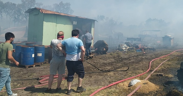 Çiftlikte çıkan yangın ormana sıçradı: 20 küçükbaş telef oldu