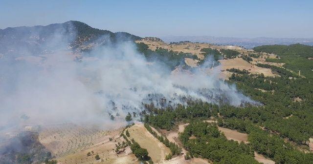 Denizli'de gece saatlerinde başlayan yangına müdahale devam ediyor