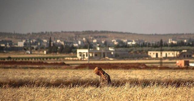 Esad rejimi 100 kişiyi mayın tarlasına sürdü: 8 ölü, 15 yaralı