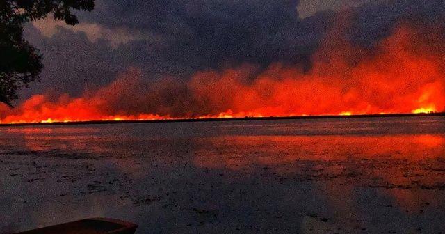 Samsun'da sazlık yangını