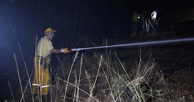 Uşak'taki orman yangını söndürüldü
