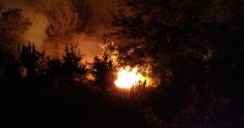 Adana'daki orman yangınına havadan müdahale tekrar başladı