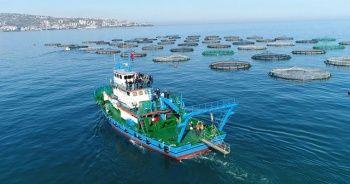 Karadeniz'in en çok ihracat gerçekleştiren ili Trabzon