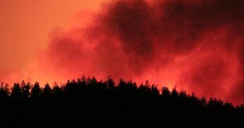 Kozan'daki orman yangını söndürülemiyor, mahalleler boşaltıldı
