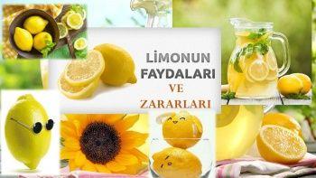 Limonun Sağlığa Faydaları ve Zararları Nelerdir?