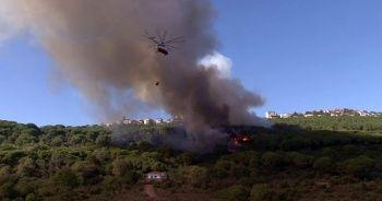 Maltepe'de korkutan orman yangını