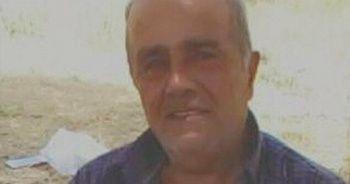 Şırnak'ta arının soktuğu çiftçi hayatını kaybetti