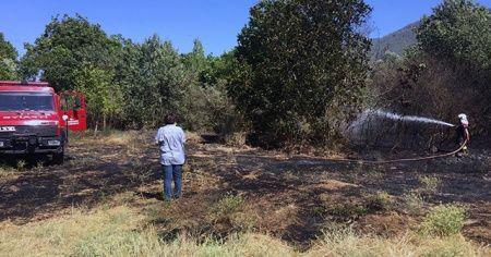 2 hektar otluk alan yandı