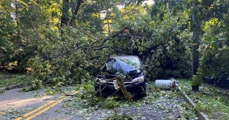 ABD'de Isaias tropikal fırtınası etkili oluyor: 9 ölü