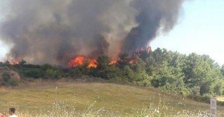 Antalya'da çıkan makilik yangını söndürüldü