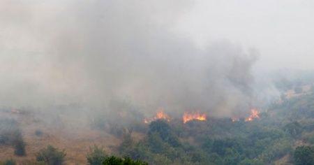 Bulgaristan-Türkiye sınırındaki yangın söndürüldü