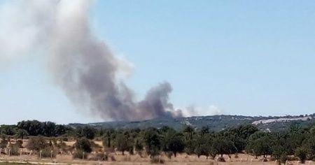 Çanakkale Ayvacık'ta orman yangını!