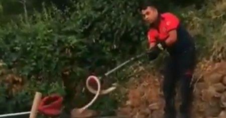 Evin bahçesindeki yılan panik yaşattı