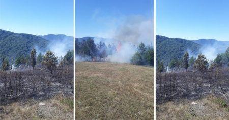 Kastamonu'da ormanlık alanda çıkan yangını köylüler söndürdü