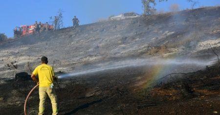 Manisa'da orman yangını yerleşim yerlerine ulaşmadan söndürüldü