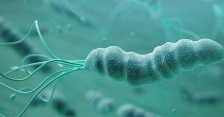Vücudunuzdaki gizli tehlike: Helikobakter pilori