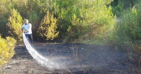 Yakakent Çam Gölü'nde yangın