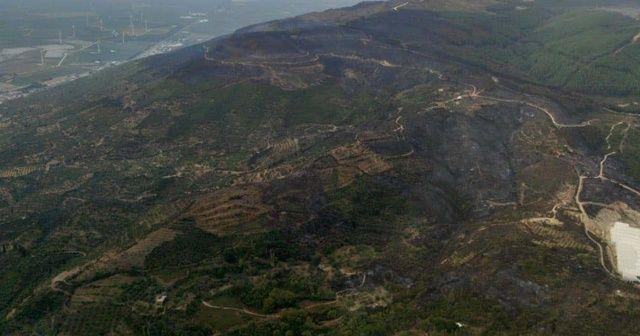 Söke'deki orman yangını kontrol altına alındı
