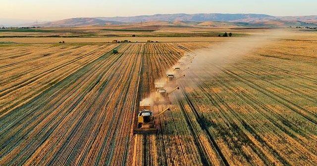 Tarım-GFE yıllık yüzde 6,74, aylık yüzde 0,61 arttı