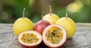 Çarkıfelek Meyvesi Nedir? Çarkıfelek Meyvesi Türkiye'de Yetişir mi?