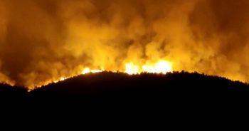 Hatay'daki orman yangını yeniden alevlendi