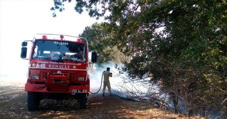 Ağaçlık alanda korkutan yangın