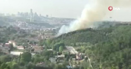 Beykoz Anadolu Hisarı'nda yangın çıktı