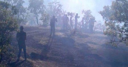 Elazığ'da orman yangını!