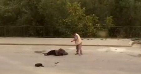 Eşini sokak ortasında böyle vurdu