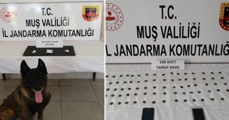 Jandarmadan uyuşturucu ve tarihi eser operasyonu: 10 gözaltı