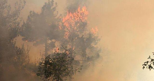 Adana'da yangın! Ekipler olay yerinde