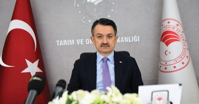 Bakan Pakdemirli: Türkiye'nin ilk elektrikli traktörü, seri üretime hazır hale geldi