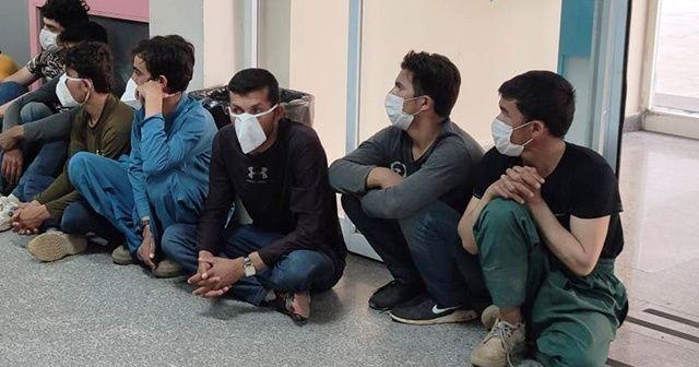 Batman'da 6 düzensiz göçmen yakalandı